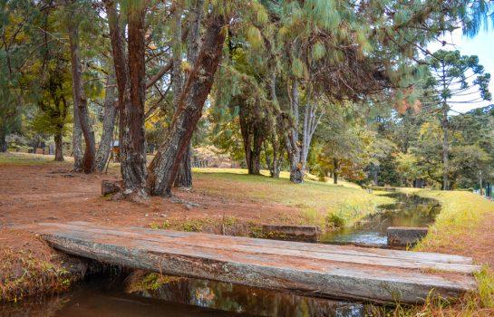 Parque Estadual em Campos do Jordão tem Programação Especial nas Férias de Inverno