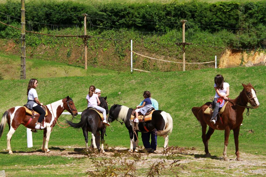 Cavalos Hotel Vila Inglesa