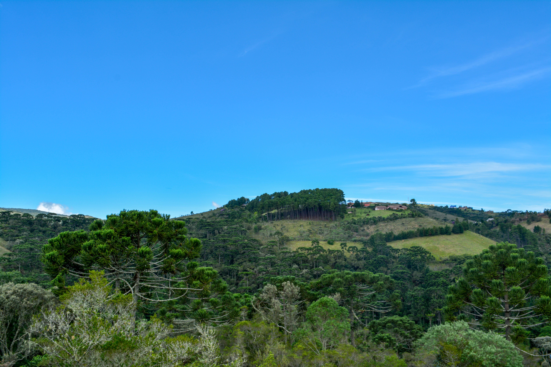 chales-rancho-santo-antonio-campos-do-jordao-09