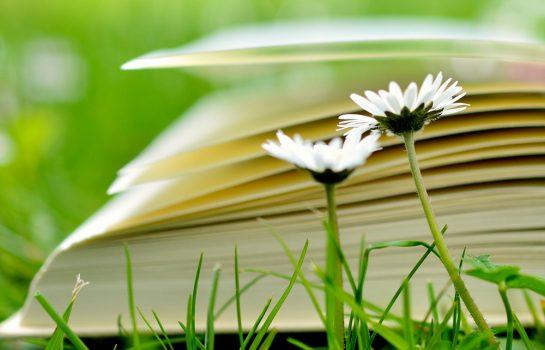 Jornada Literária acontece em Campos do Jordão no Final de Semana