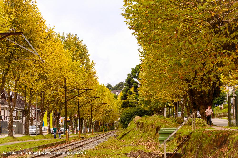 Outono-2018-campos-do-jordao-Cristiano-Tomaz-12