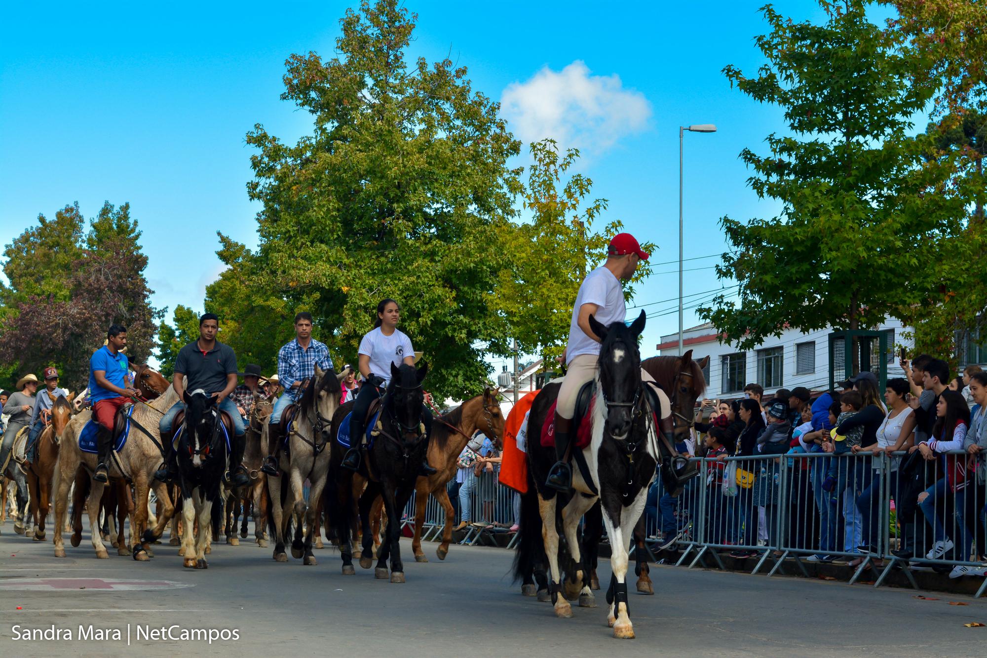 desfile-civico-campos-do-jordao-150