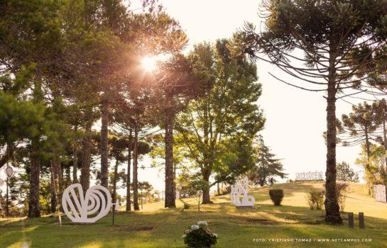 #SONHAROMUNDO: Árvores dos Sonhos