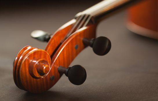 Quarteto de Cordas se apresenta na Concha Acústica neste sábado em Campos