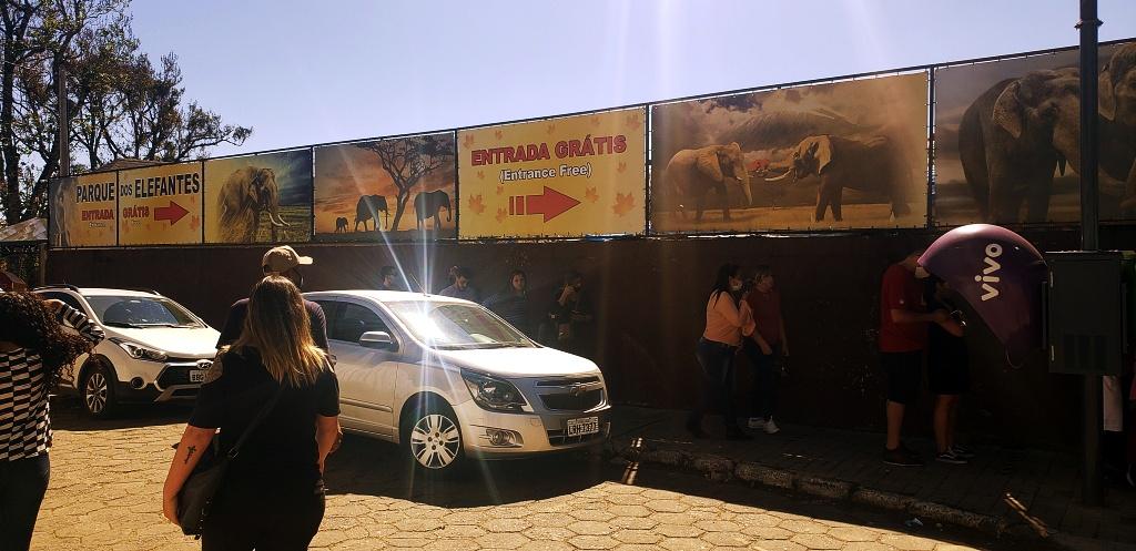 morro-elefante-campos-do-jordao-28