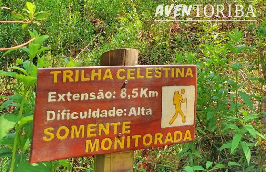 aventoriba_trilha-celestina-horto-florestal_hotel-toriba-campos-do-jordao-1