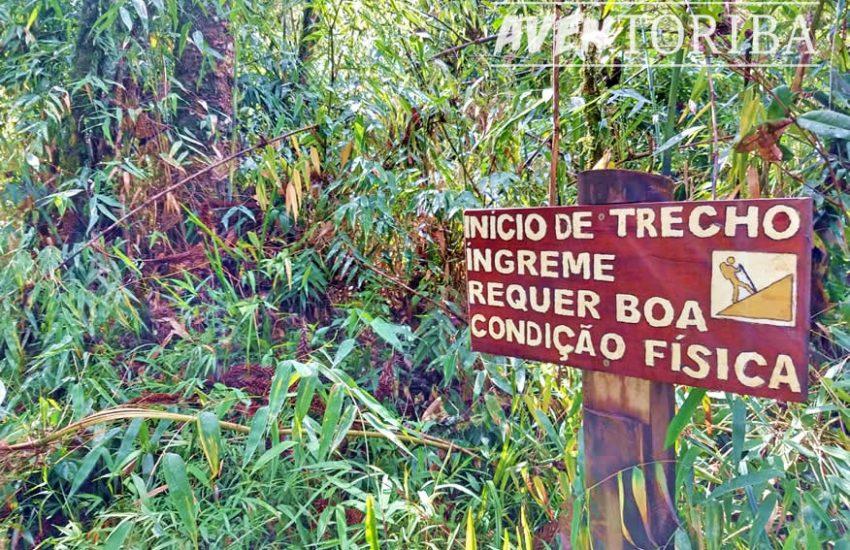 aventoriba_trilha-celestina-horto-florestal_hotel-toriba-campos-do-jordao-5