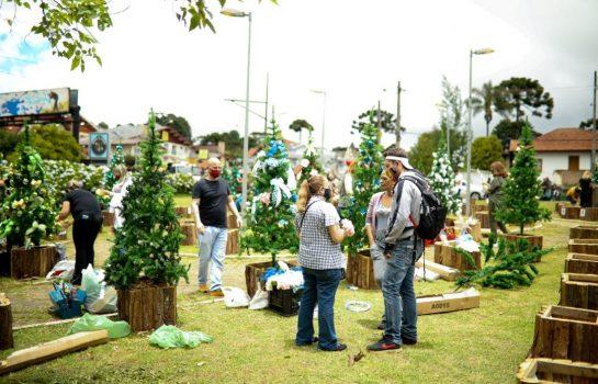 Empresas de Campos do Jordão se reúnem para Ação Circuito das Árvores Natalinas