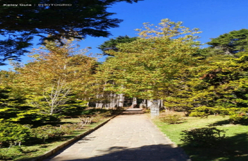 keisy-guia-de-turismo-campos-do-jordao-02